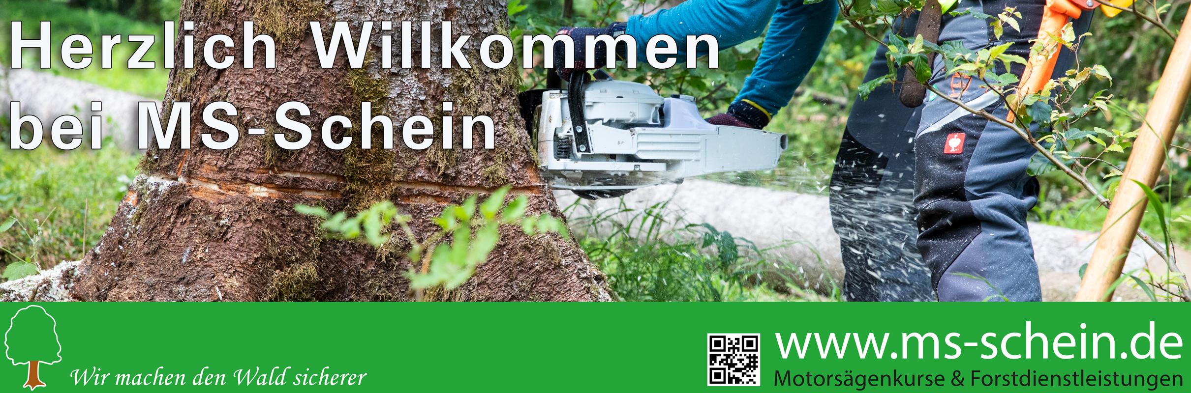 MS-Schein.de